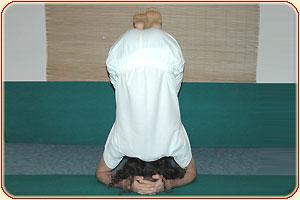 shirshasana, posture sur la tête