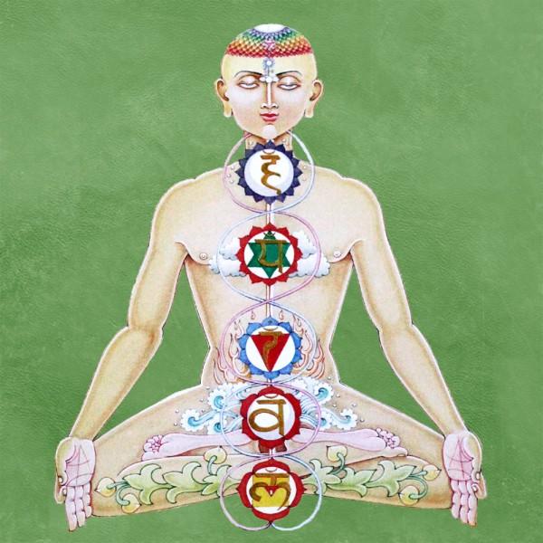 la sushumna, les nadi et les chakras